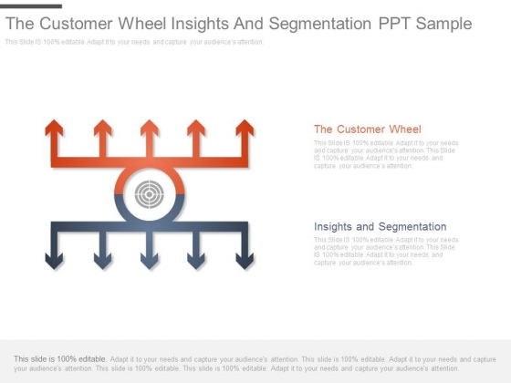The Customer Wheel Insights And Segmentation Ppt Sample