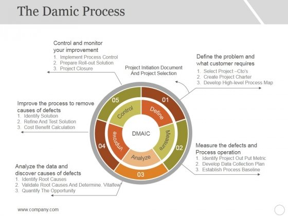 The_Damic_Process_Template_1_Ppt_PowerPoint_Presentation_Model_Guidelines_Slide_1