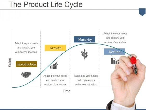 The Product Life Cycle Ppt PowerPoint Presentation Summary Slideshow