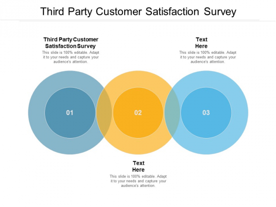Third Party Customer Satisfaction Survey Ppt PowerPoint Presentation Styles Slides Cpb