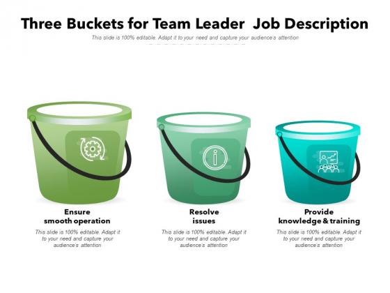 Three Buckets For Team Leader Job Description Ppt PowerPoint Presentation Icon Professional PDF