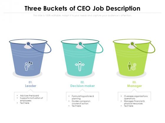 Three Buckets Of CEO Job Description Ppt PowerPoint Presentation Gallery Topics PDF