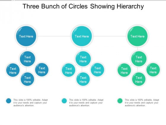 Three Bunch Of Circles Showing Hierarchy Ppt Powerpoint Presentation Portfolio Sample