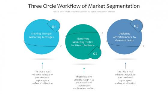 Three Circle Workflow Of Market Segmentation Ppt PowerPoint Presentation File Background Designs PDF