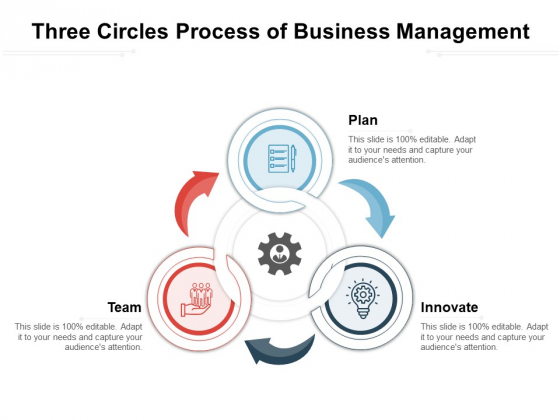 Three Circles Process Of Business Management Ppt PowerPoint Presentation Gallery Pictures PDF