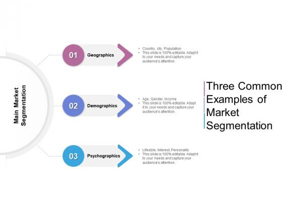 Three Common Examples Of Market Segmentation Ppt PowerPoint Presentation Inspiration Slideshow PDF