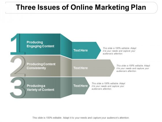 Three Issues Of Online Marketing Plan Ppt PowerPoint Presentation Layouts Examples