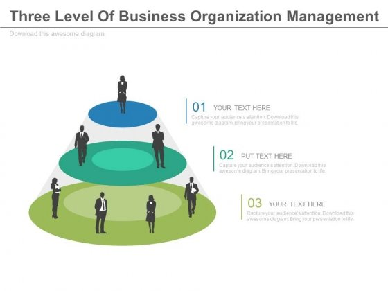 Three Level Management Team Diagram Powerpoint Slides