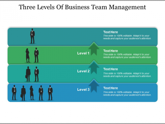 Three Levels Of Business Team Management Ppt PowerPoint Presentation Infographics Example Introduction