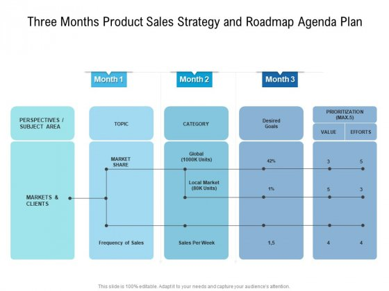 Three Months Product Sales Strategy And Roadmap Agenda Plan Information