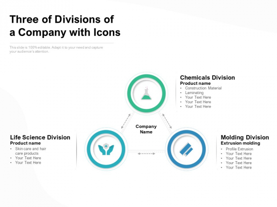 Three Of Divisions Of A Company With Icons Ppt PowerPoint Presentation Portfolio Good PDF