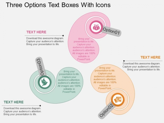 Three Options Text Boxes With Icons Powerpoint Template