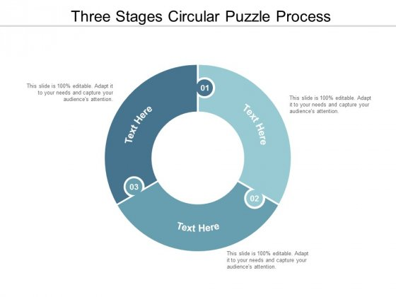 three stages circular puzzle process ppt powerpoint presentation professional skills