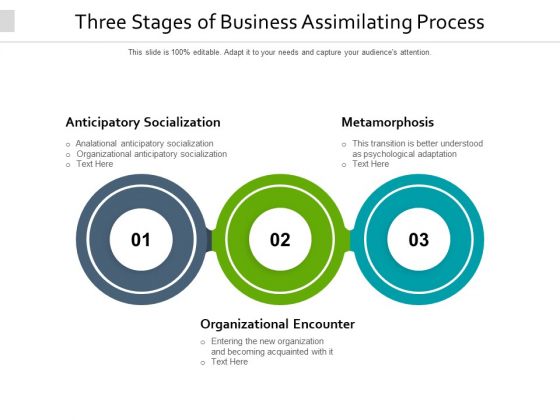 Three Stages Of Business Assimilating Process Ppt PowerPoint Presentation Infographic Template Themes PDF