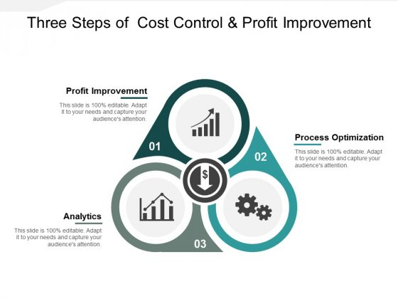 Three Steps Of Cost Control And Profit Improvement Ppt PowerPoint Presentation Ideas Master Slide