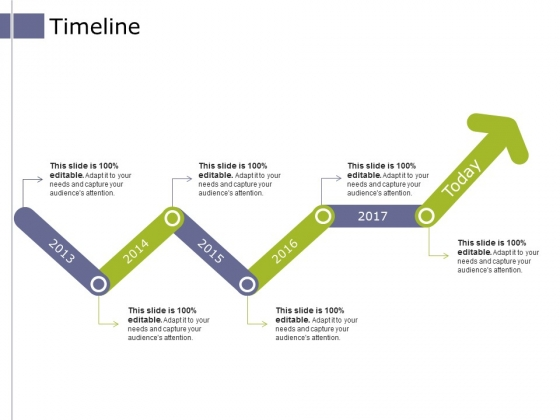 Timeline Ppt PowerPoint Presentation Styles Graphics Pictures