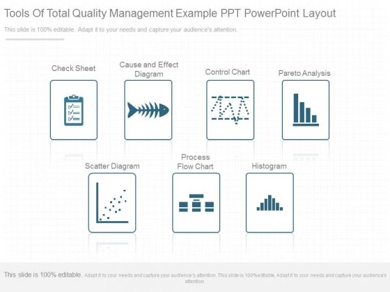 Tools Of Total Quality Management Example Ppt Powerpoint Layout