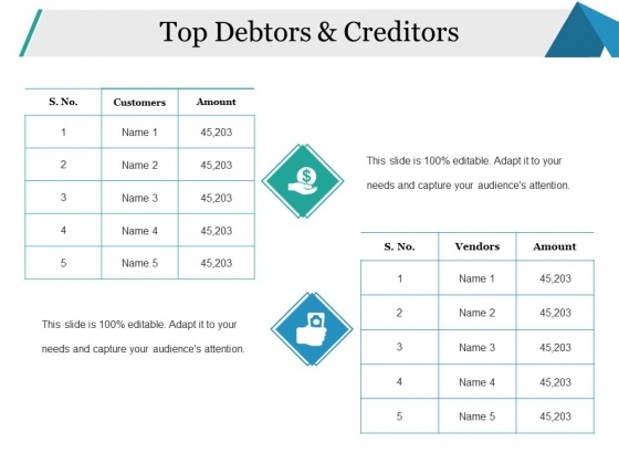 Top Debtors And Creditors Ppt PowerPoint Presentation Show Display