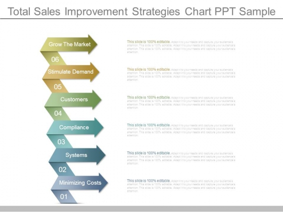 Total Sales Improvement Strategies Chart Ppt Sample