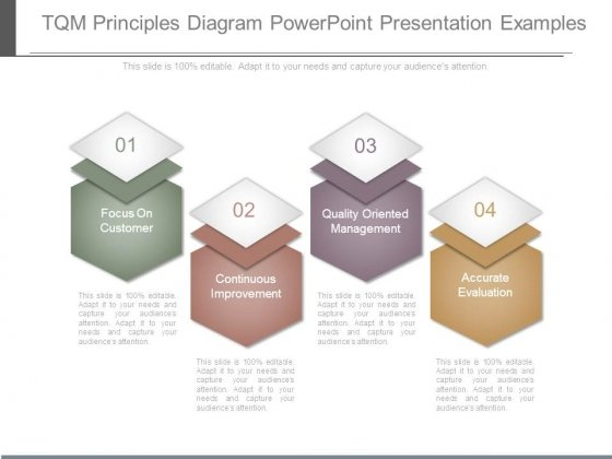 Tqm Principles Diagram Powerpoint Presentation Examples