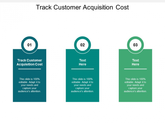 Track Customer Acquisition Cost Ppt PowerPoint Presentation Infographic Template Gridlines Cpb