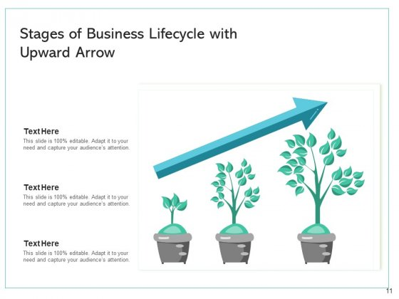 Trade_Lifecycle_Growth_Maturity_Ppt_PowerPoint_Presentation_Complete_Deck_Slide_11