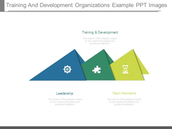 Training And Development Organizations Example Ppt Images
