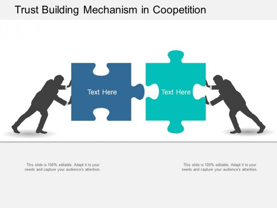 Trust Building Mechanism In Coopetition Ppt Powerpoint Presentation Portfolio Outfit