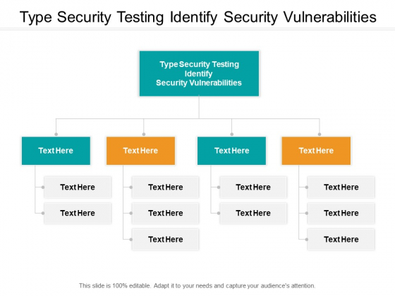 Type Security Testing Identify Security Vulnerabilities Ppt PowerPoint Presentation Inspiration Themes Cpb