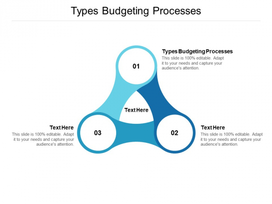 Types Budgeting Processes Ppt PowerPoint Presentation Diagram Ppt Cpb