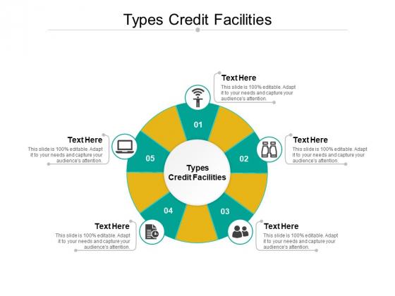 Types Credit Facilities Ppt PowerPoint Presentation Ideas Slide Portrait Cpb