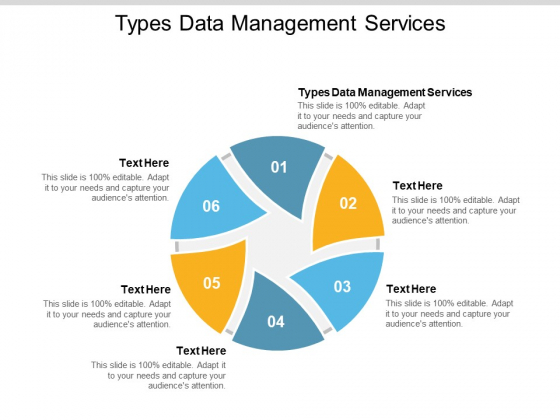 Types Data Management Services Ppt PowerPoint Presentation Outline Graphics Template Cpb Pdf
