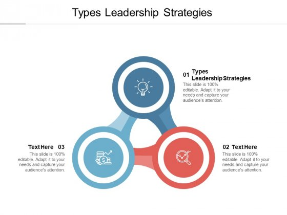 Types Leadership Strategies Ppt PowerPoint Presentation Gallery Layout Cpb