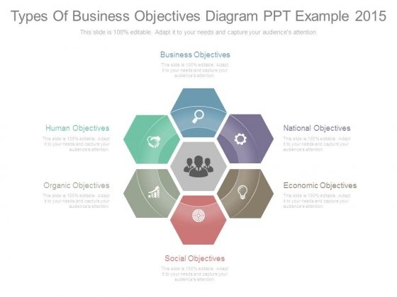 Types of business objectives diagram ppt example 2015 powerpoint types of business objectives diagram ppt example 2015 powerpoint templates ccuart Images