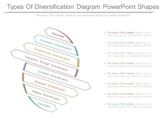 Types Of Diversification Diagram Powerpoint Shapes