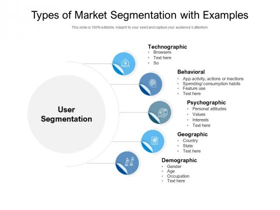 Types Of Market Segmentation With Examples Ppt PowerPoint Presentation File Example File PDF