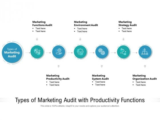 Types Of Marketing Audit With Productivity Functions Ppt PowerPoint Presentation File Template PDF