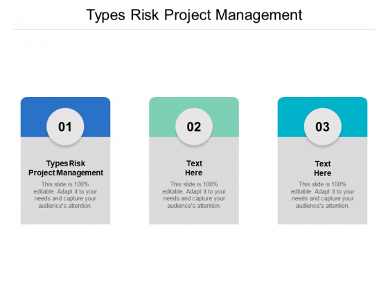 Types Risk Project Management Ppt PowerPoint Presentation Diagram Lists Cpb