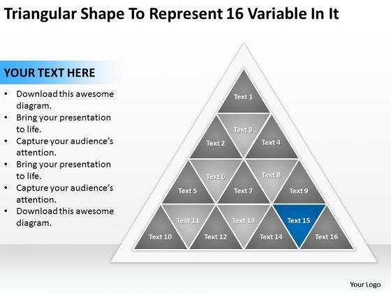 Triangular Shape To Represent 16 Variable In It Business Plan Company PowerPoint Slides