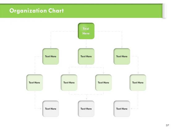 Understanding_Organizational_Structures_Ppt_PowerPoint_Presentation_Complete_Deck_With_Slides_Slide_37