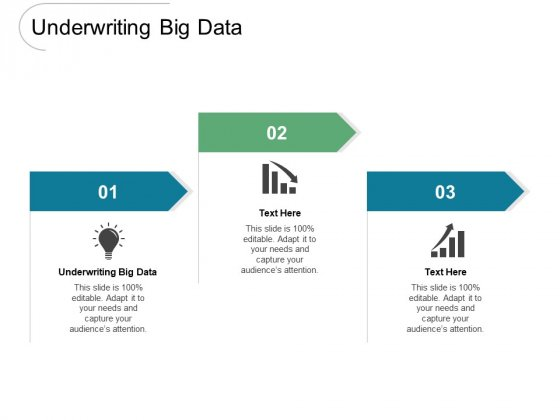 Underwriting Big Data Ppt PowerPoint Presentation Infographics Examples Cpb Pdf