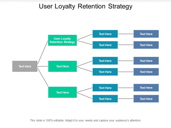 User Loyalty Retention Strategy Ppt PowerPoint Presentation Layouts Display