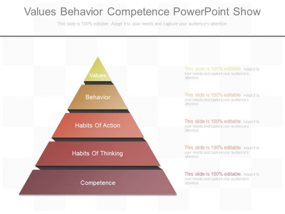 Values Behavior Competence Powerpoint Show