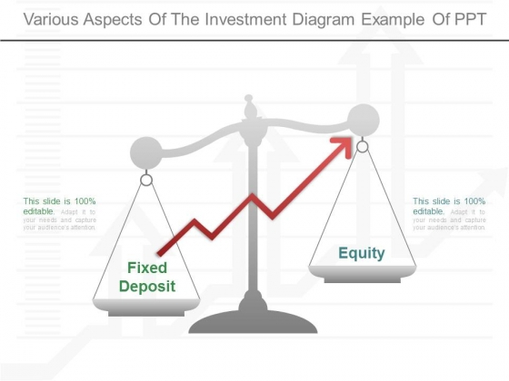 Various Aspects Of The Investment Diagram Example Of Ppt