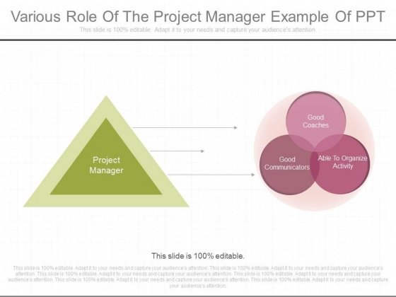 Various Role Of The Project Manager Example Of Ppt