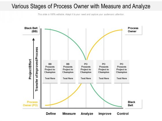 Various Stages Of Process Owner With Measure And Analyze Ppt PowerPoint Presentation Gallery Show PDF