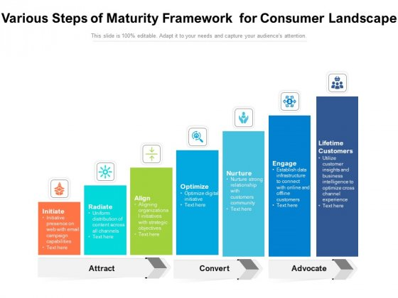 Various Steps Of Maturity Framework For Consumer Landscape Ppt PowerPoint Presentation Styles Display PDF