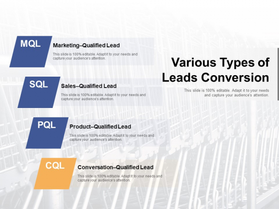 Various Types Of Leads Conversion Ppt PowerPoint Presentation Icon Gallery PDF