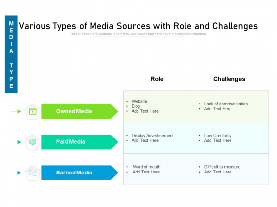 Various Types Of Media Sources With Role And Challenges Ppt PowerPoint Presentation Infographic Template Files PDF