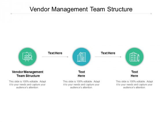 Vendor Management Team Structure Ppt PowerPoint Presentation Summary File Formats Cpb